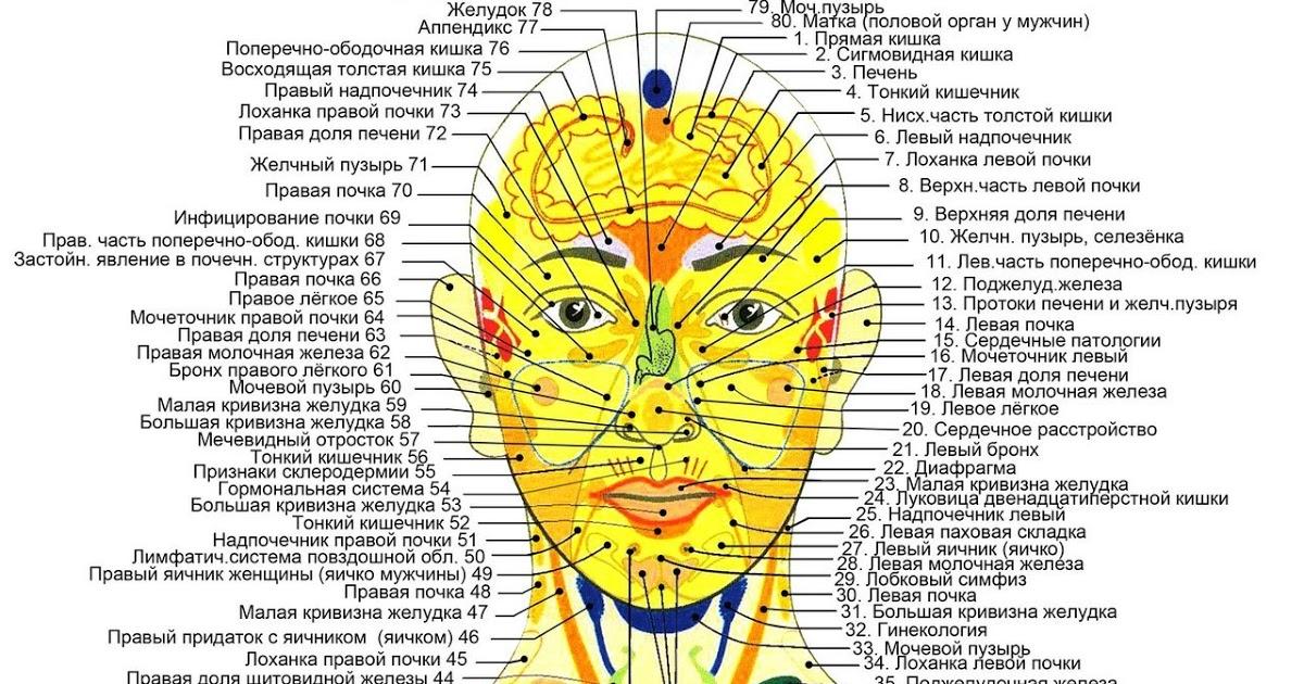 акупунктурные точки на лице и голове